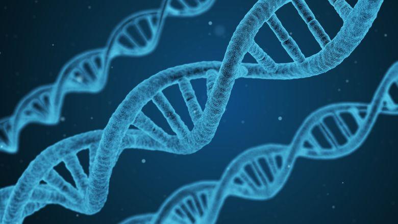 47 genen houden verband met tandbederf