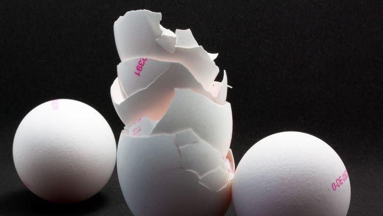 Eierschalen kunnen bijdragen aan genezing tanden en botten